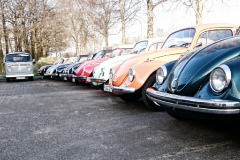 VW_Käfer-in-Reihe